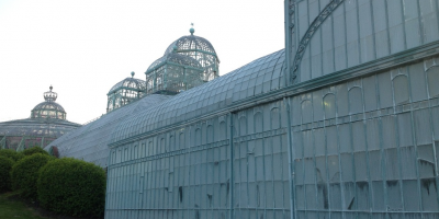 Visit of the Royal Greenhouses of Laeken