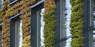 Greening facades and roofs