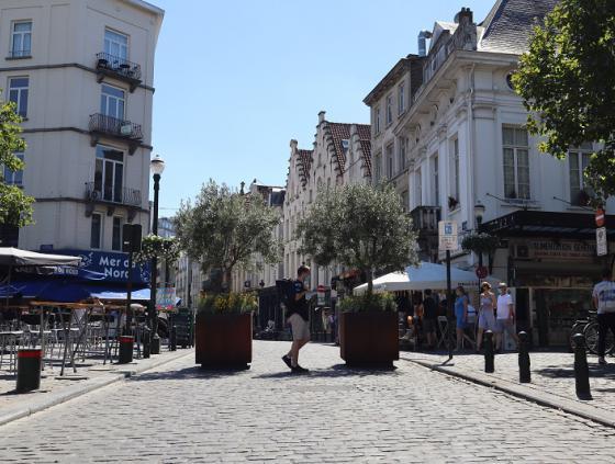Rue Sainte-Catherine becomes shopping pedestrian street