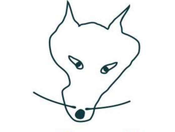 Le Wolf - events and workshops