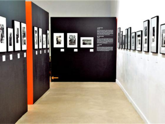 Exhibition. Léonard Freed, Worldview