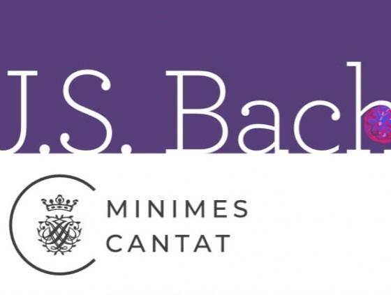 Brussels Organ Summer