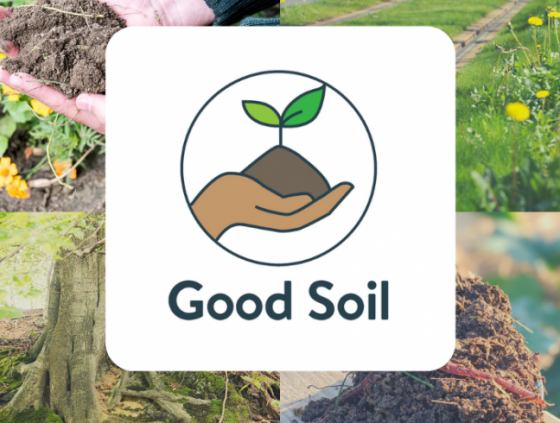 Survey on the soil in Brussels