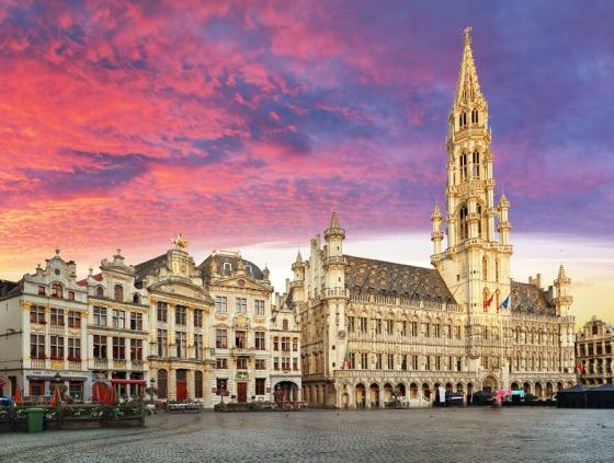 Call for applications. Representatives in the Brussels Council for Cultural Diversity
