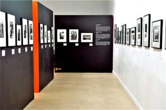 Exhibition. Léonard Freed, Worldview